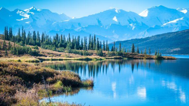 denali national park with mountain background Alaska