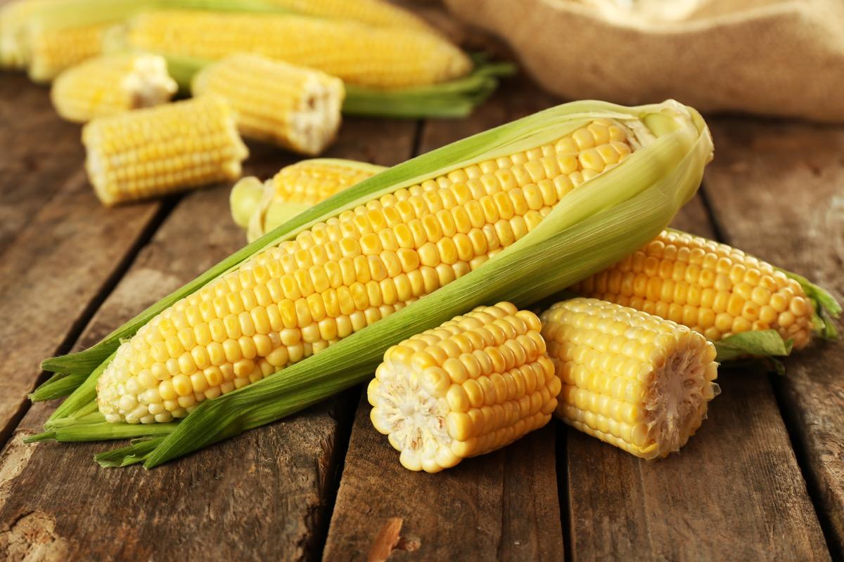 ear of corn, funniest jokes