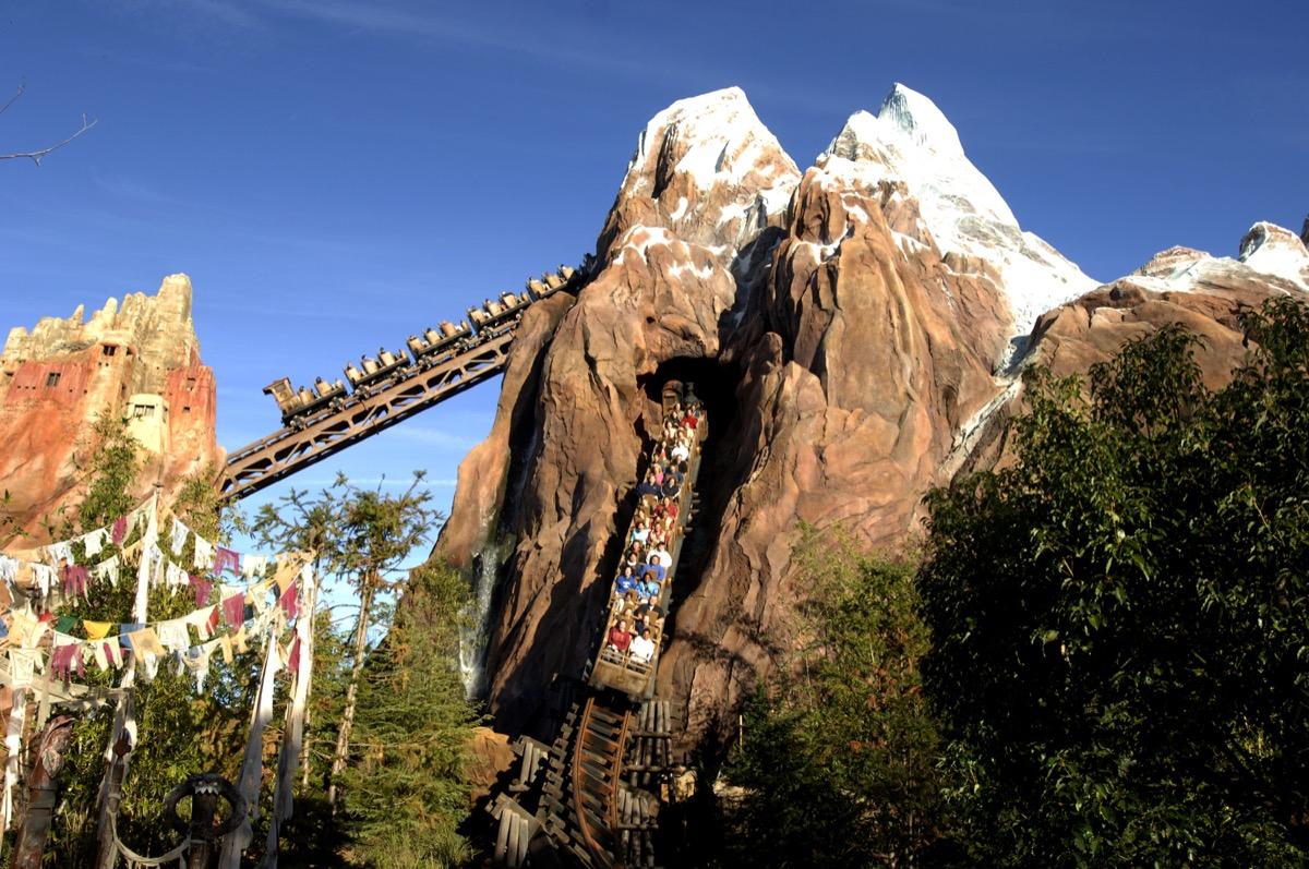 roller coaster in disney theme park