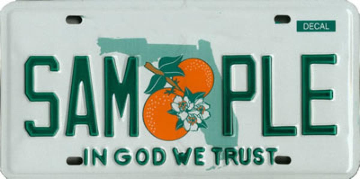 florida license plate photoshopped