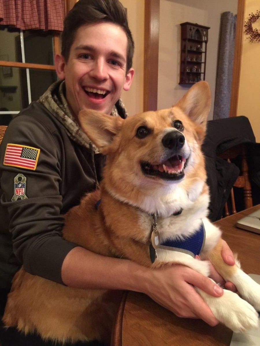 man and corgi look alike dogs who look like their owners