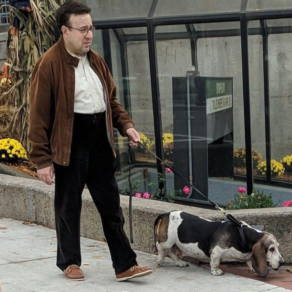 man who looks like his dog dogs who look like their owners