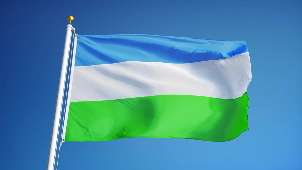 Molossia flag