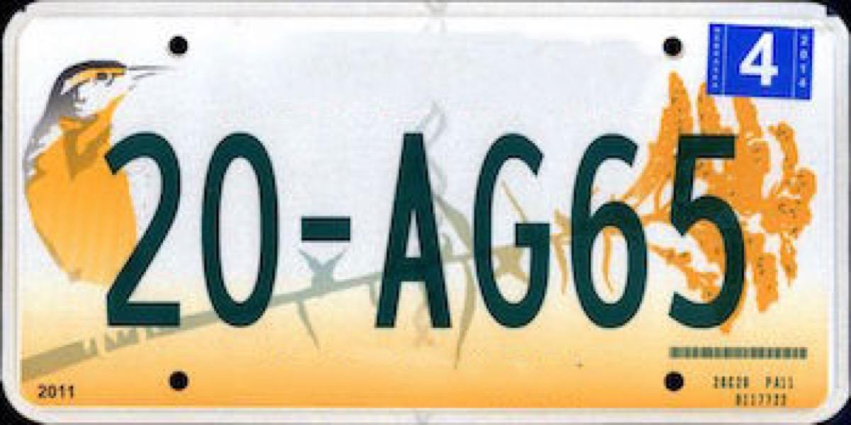 nebraska license plate photoshopped
