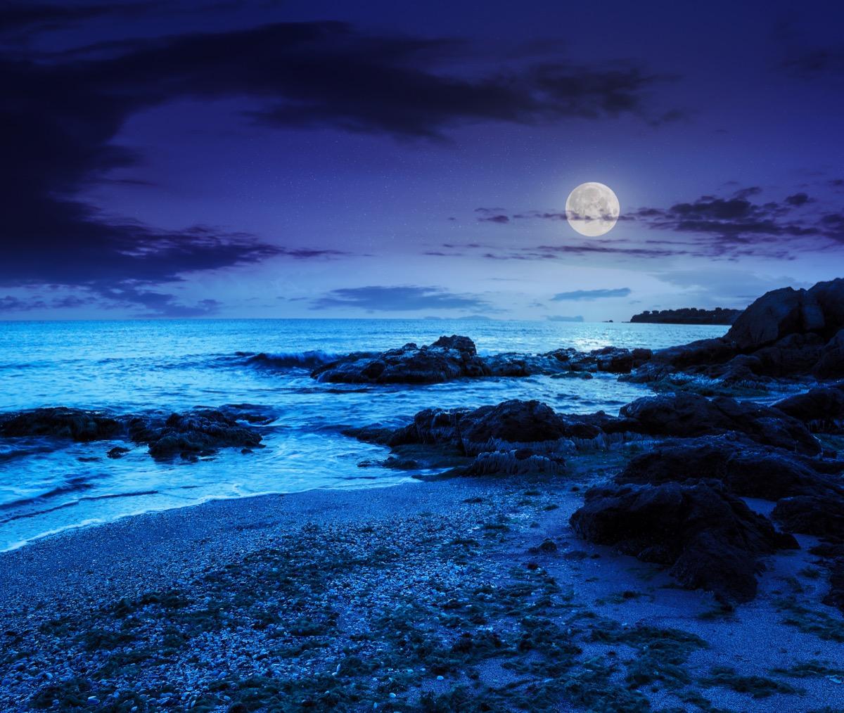 Beach shore at night