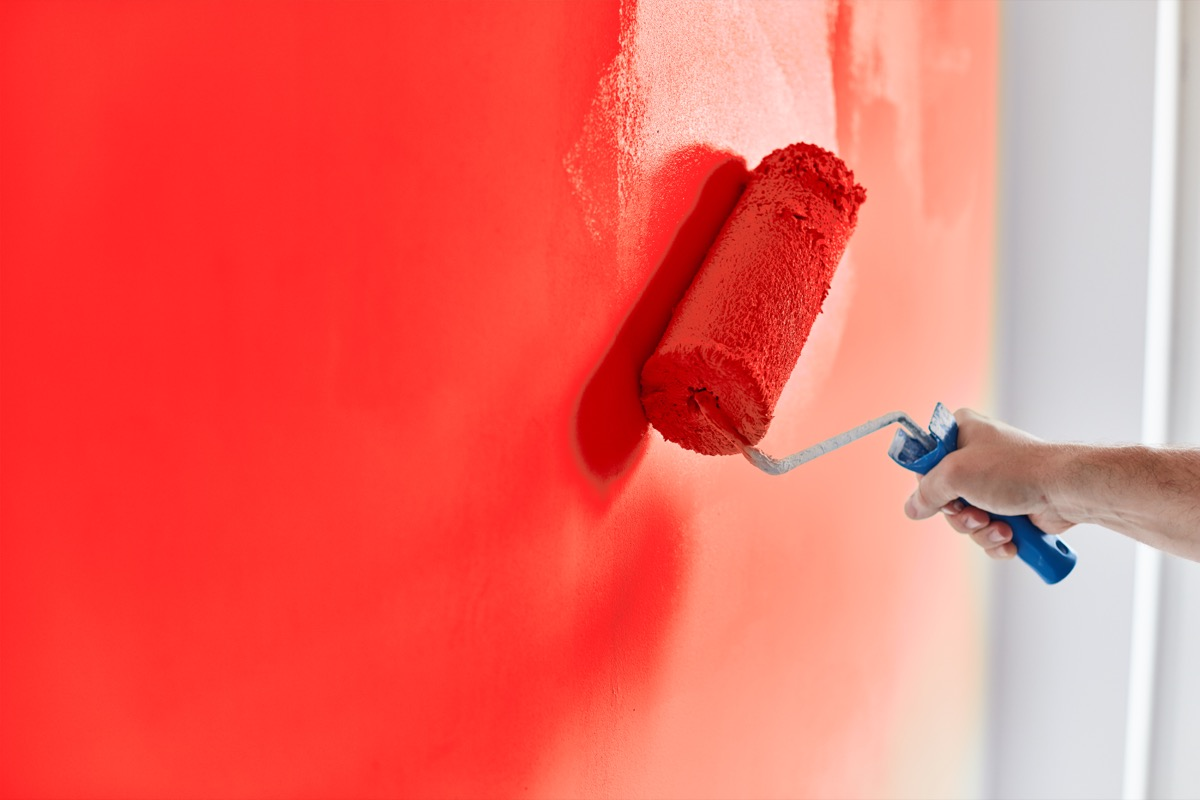 Male hand painting wall with paint roller. Painting apartment, renovating with red color paint.