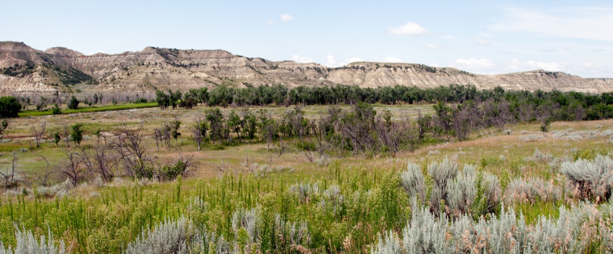 green area with trees and bushes sit amid mountains, state fact about north dakota