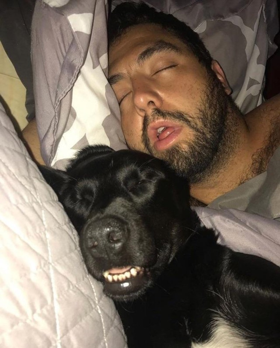 sleeping black lab and owner dogs who look like their owners