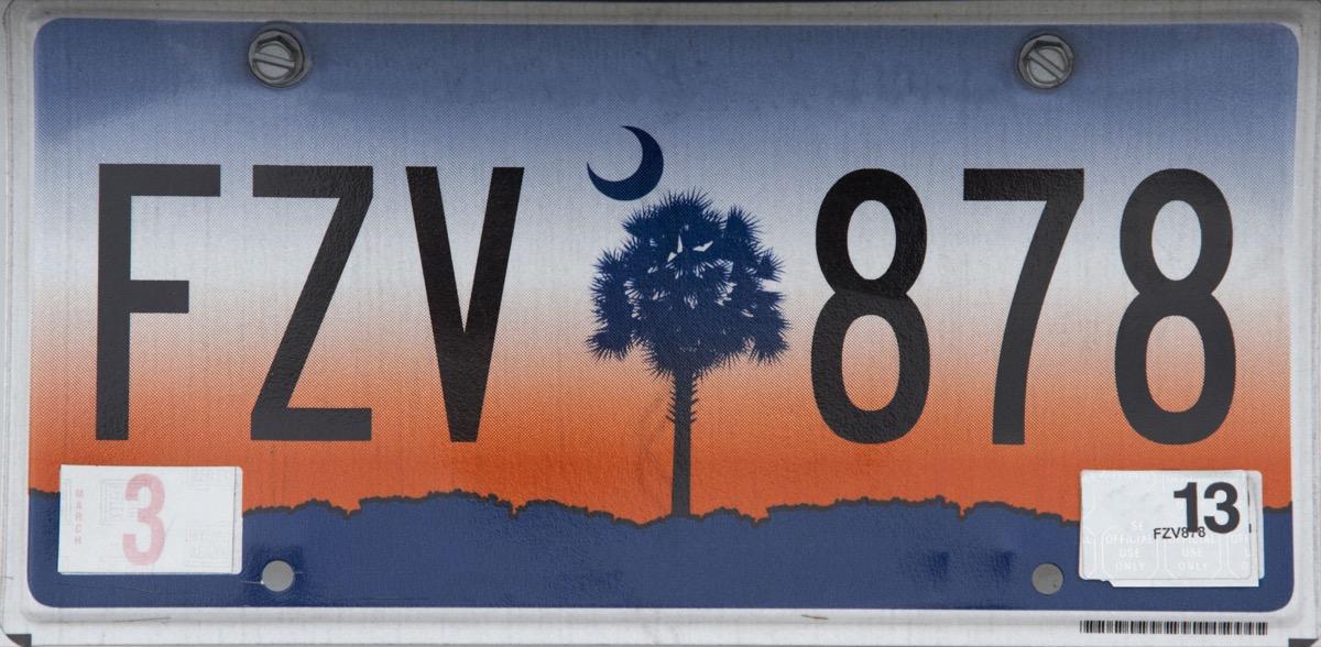 south carolina license plate photoshopped