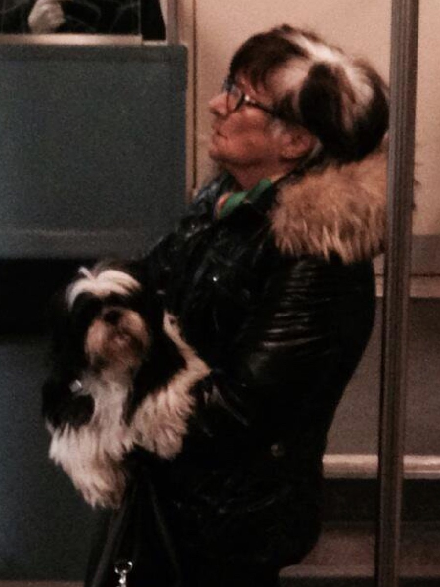 woman with the same hairstyle as her dog dogs who look like their owners