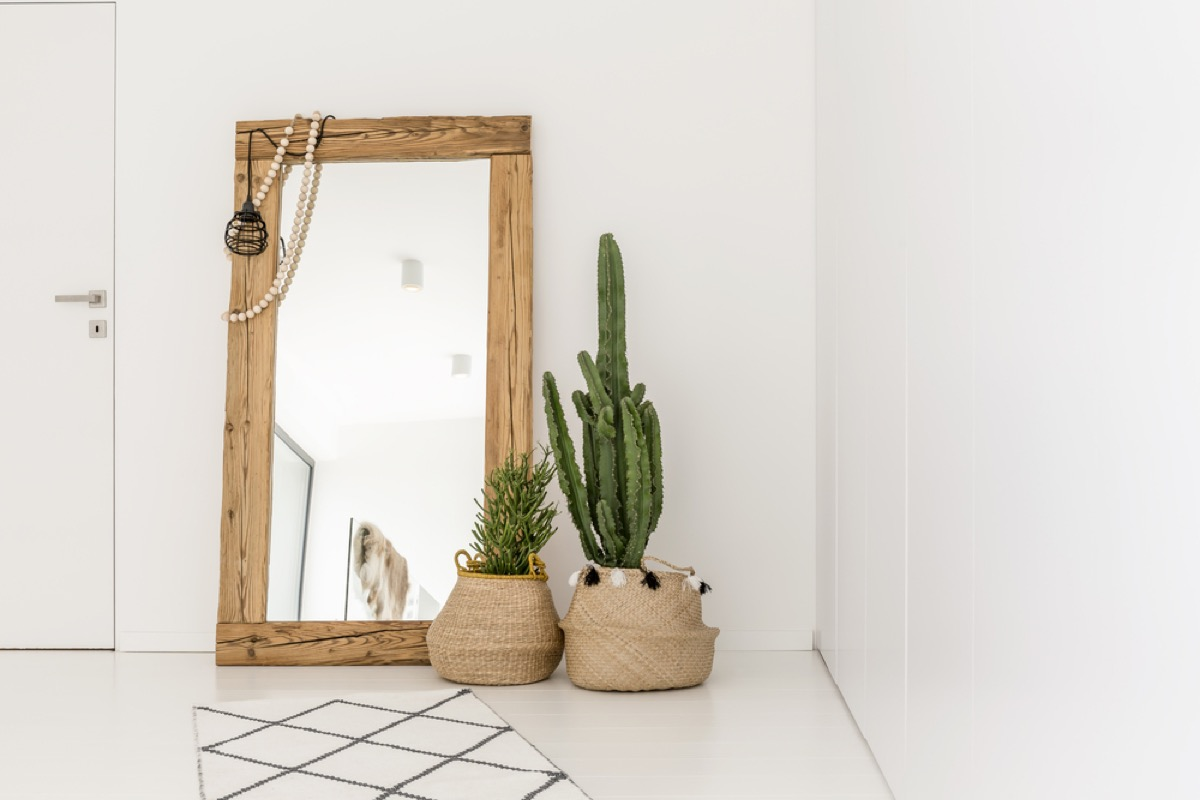 oversized mirror with cacti in front of it in white modern home