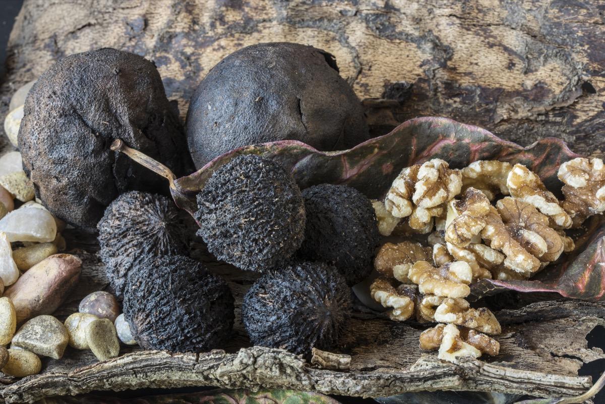 black walnuts, most common street name