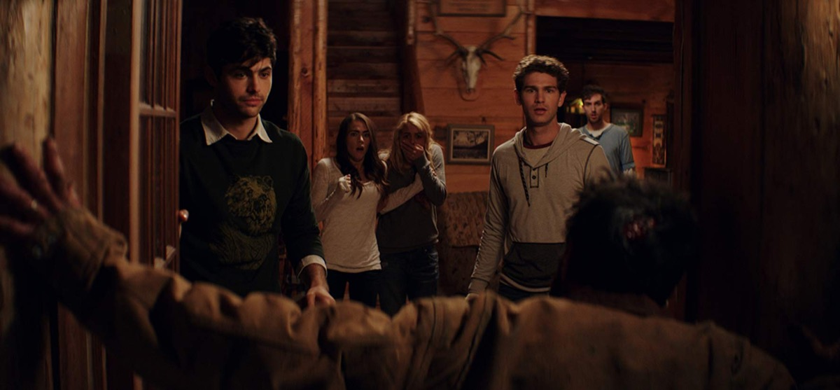cabin fever movie, worst reviewed movies