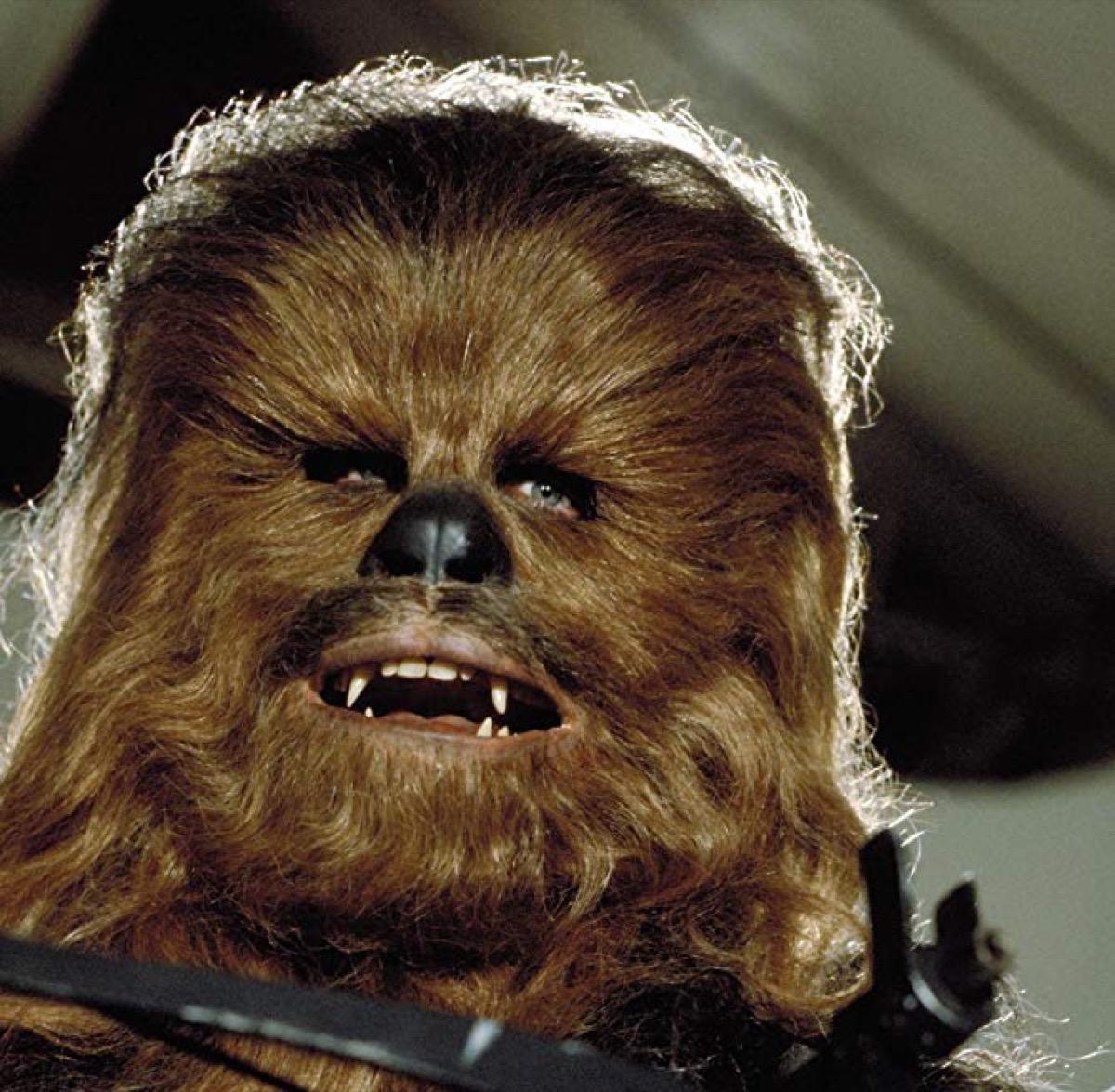Chewbacca in Return of the Jedi