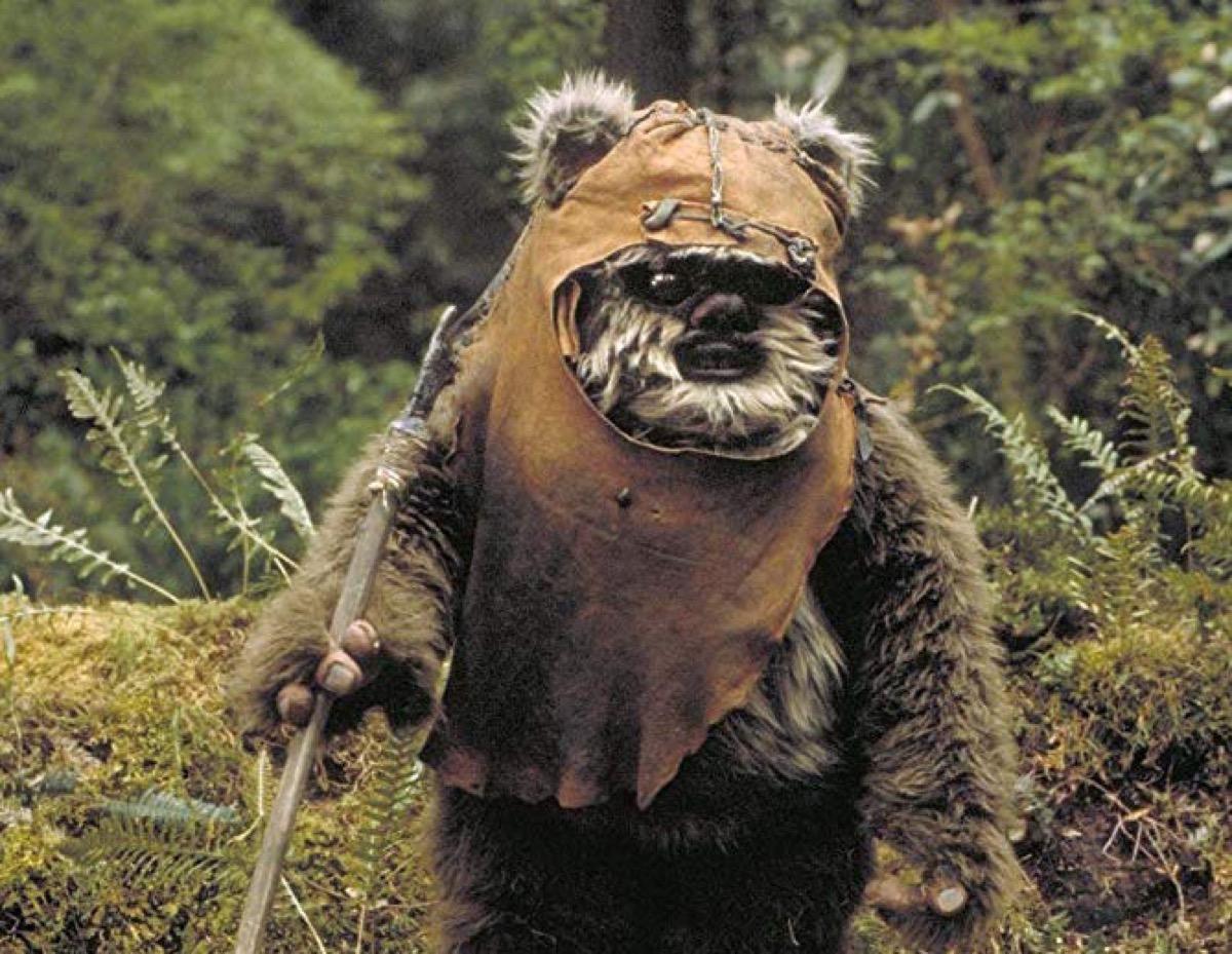 Wicket the Ewok in Return of the Jedi