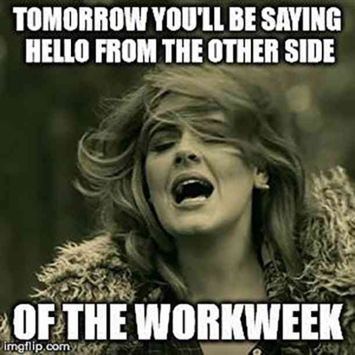 hello from the other side of the work week, hump day memes