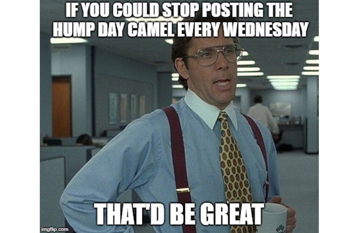 hump day meme office, hump day memes