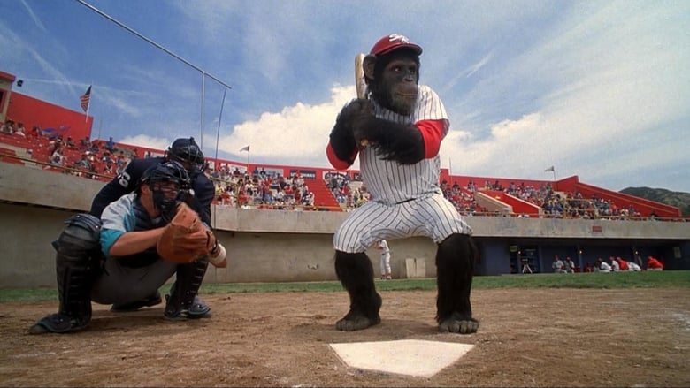 monkey at bat in ed