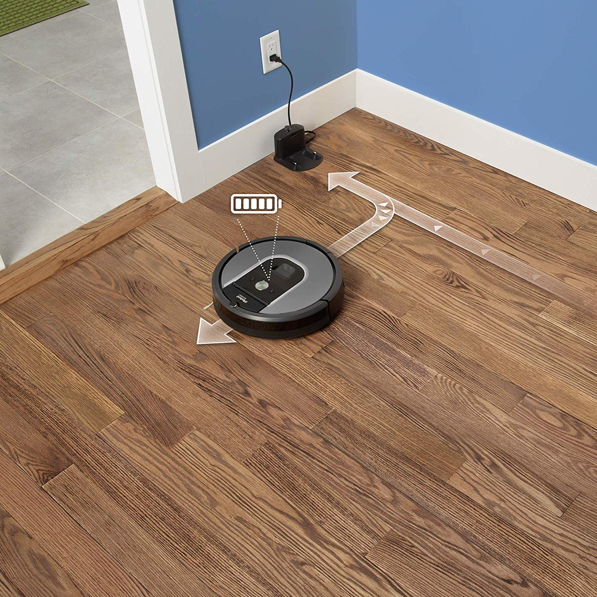 roomba appliances with cult followings