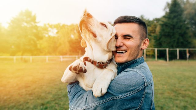 study finds dog owners are happier than cat owner