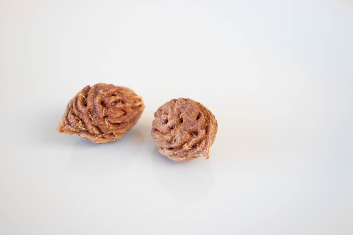 Peach Pit, an inedible part of food called chanking