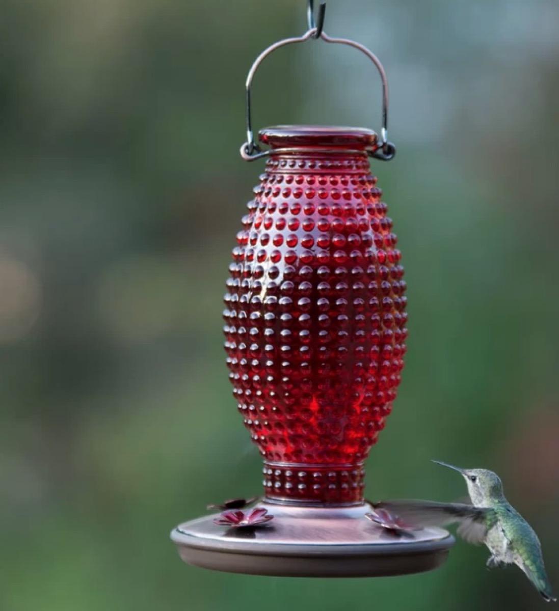 red bottle hummingbird feeder, summer buys under $100
