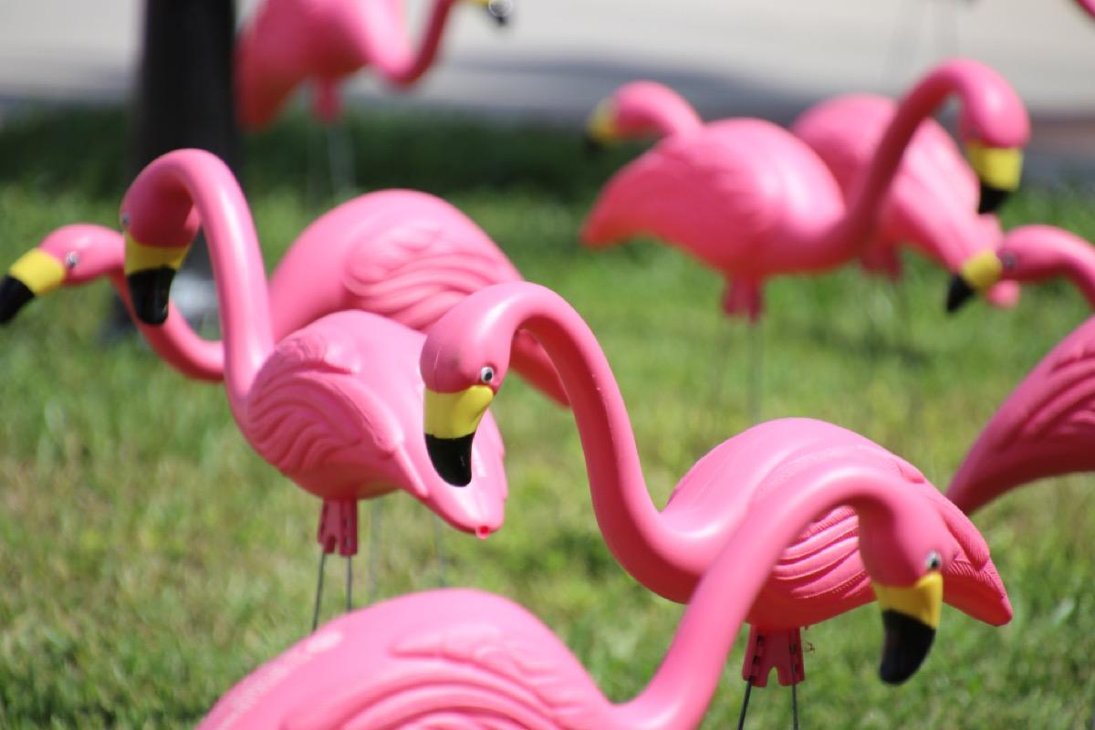 pink flamingo lawn decoration, vintage home upgrades