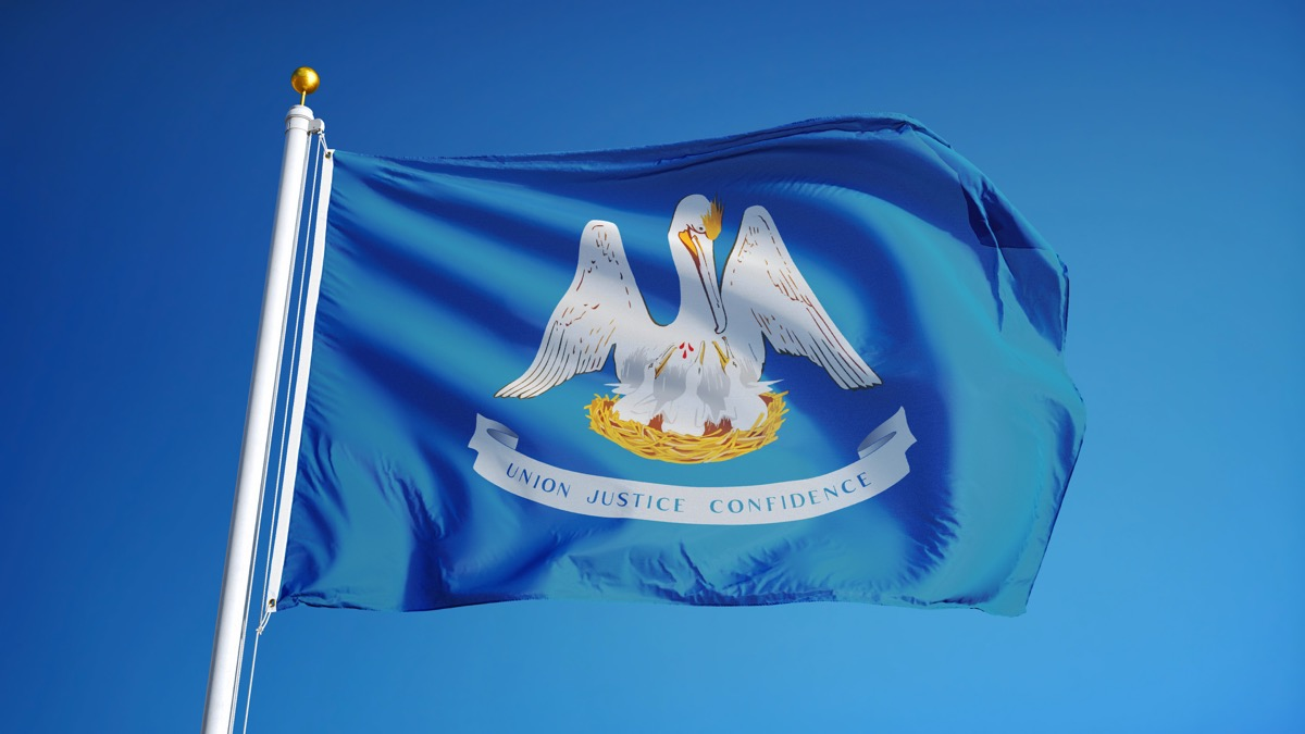 louisiana state flag facts