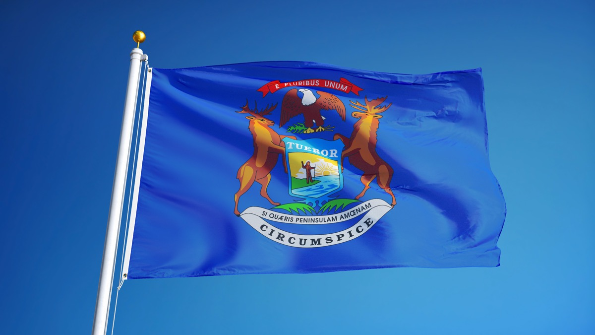 michigan state flag facts