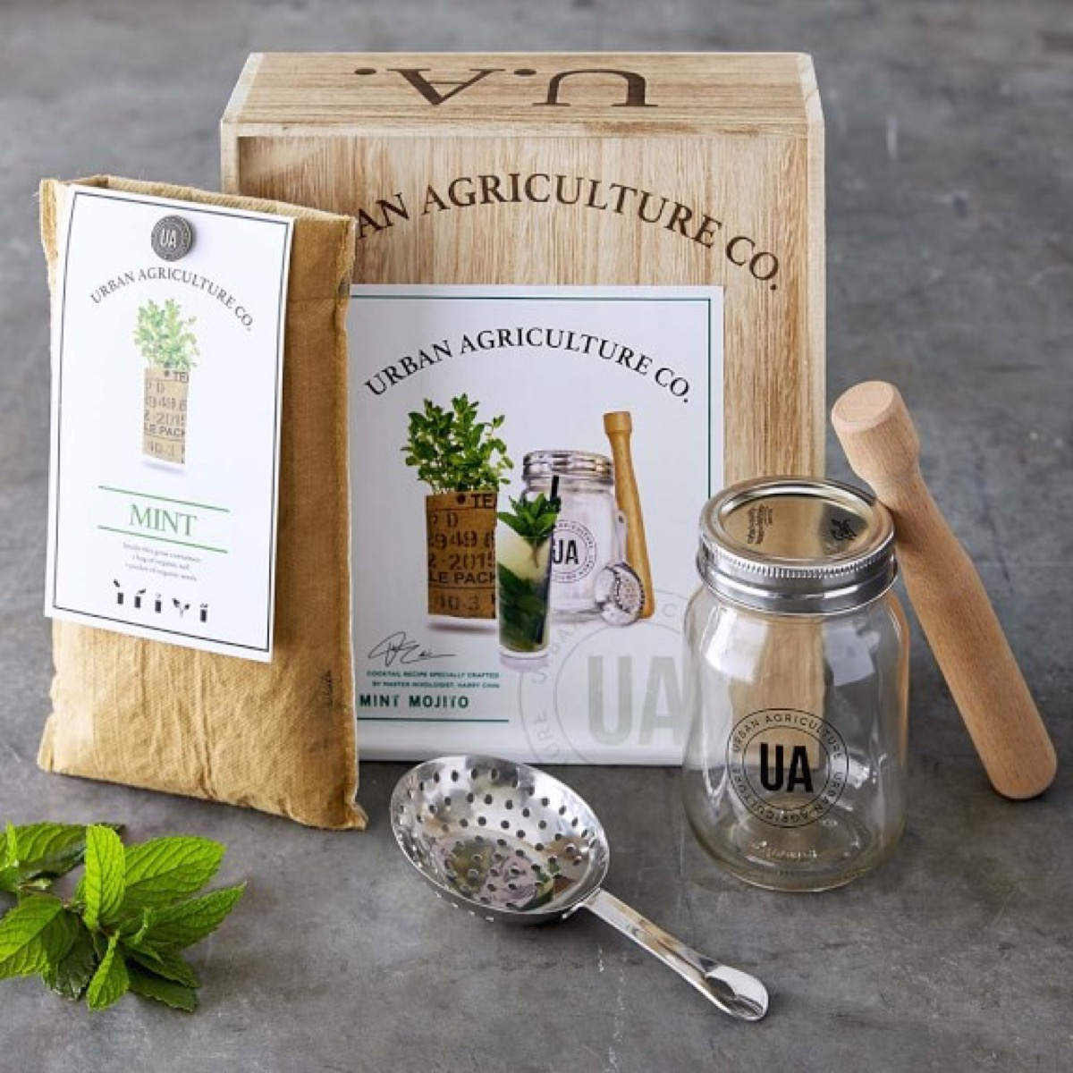 grow your own mojito cocktail kit from williams sonoma