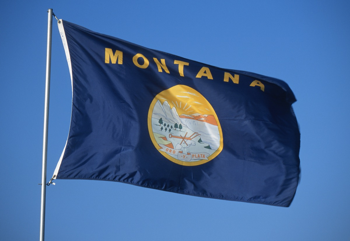 montana state flag facts