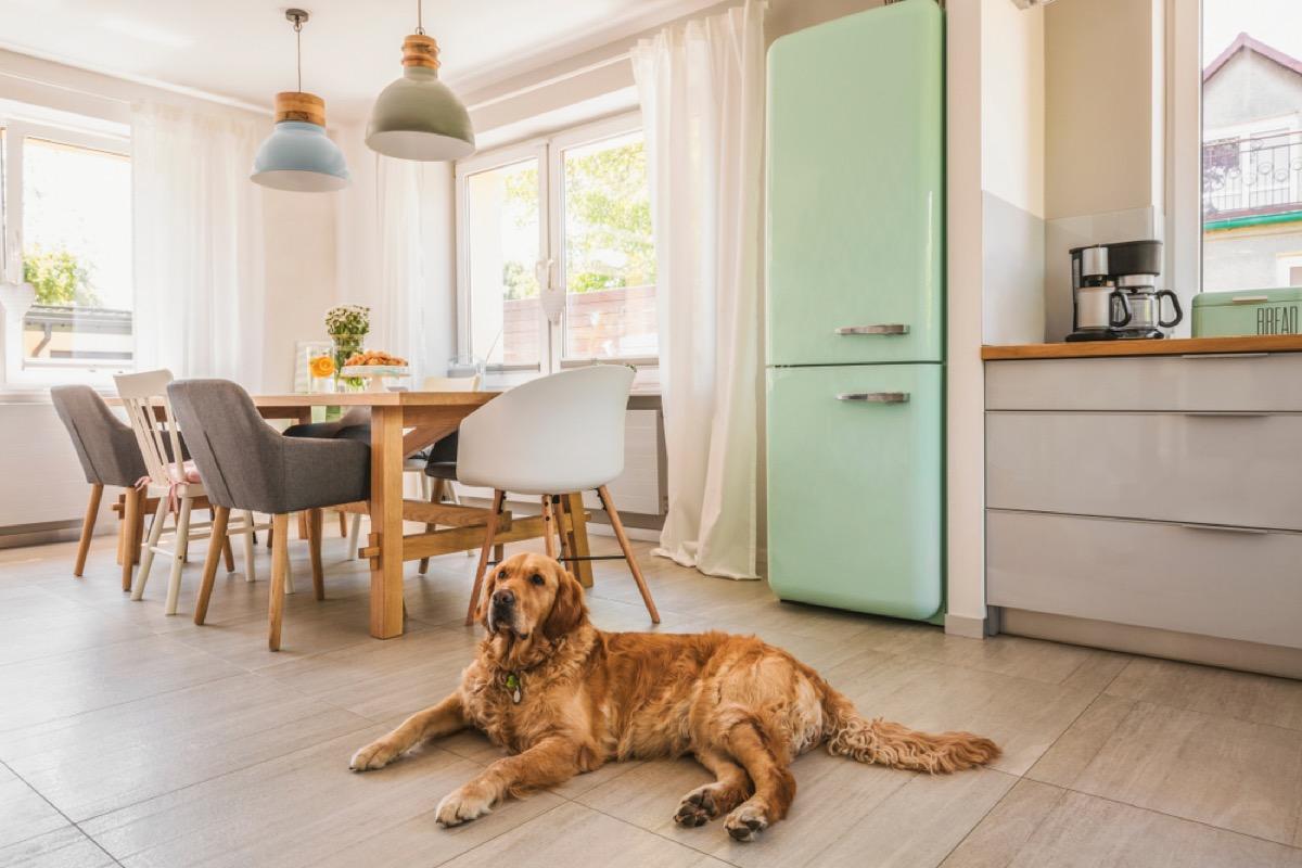 turquoise fridge, vintage home upgrades