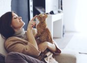 cat owners prefer company of cats to humans.