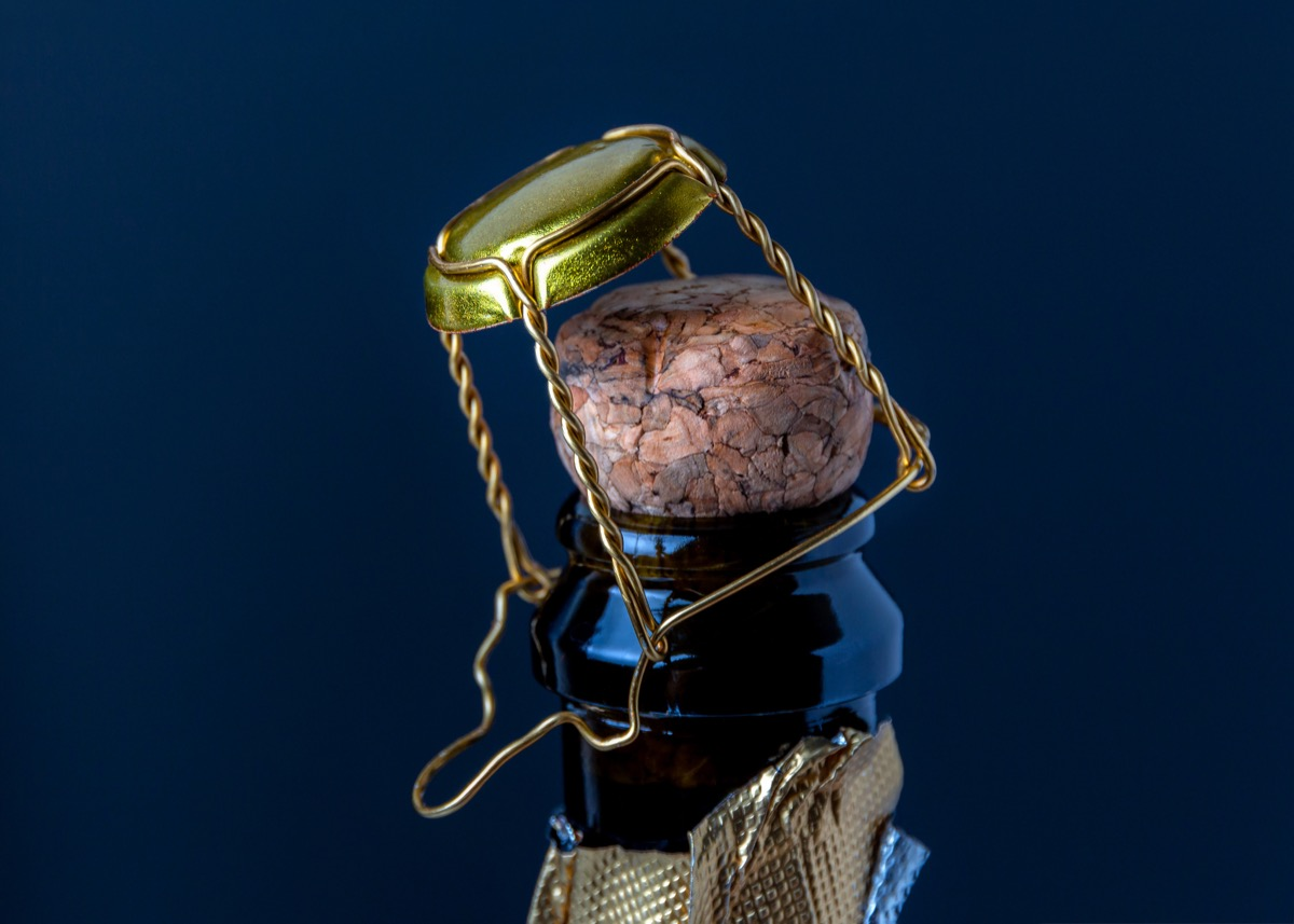 Cork and wire on a bottle of wine or champagne on a dark blue background. Holiday concept