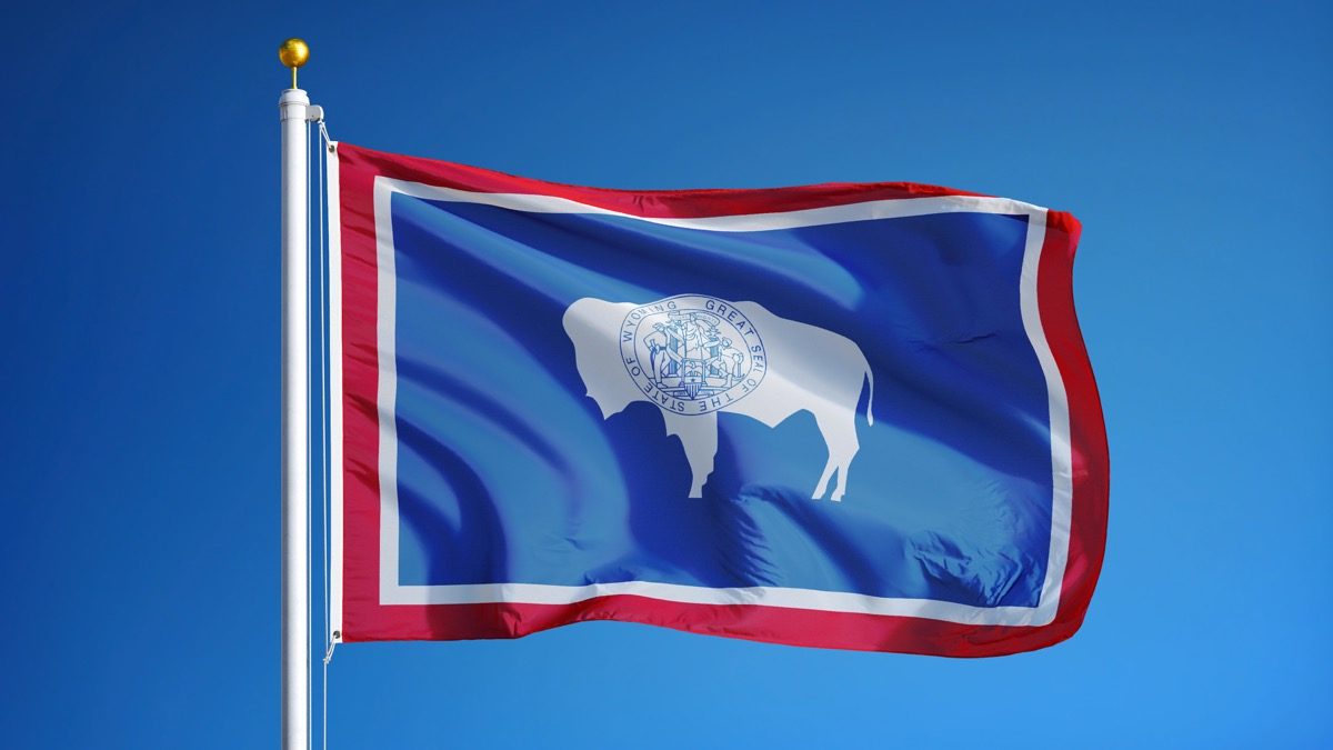 wyoming state flag facts