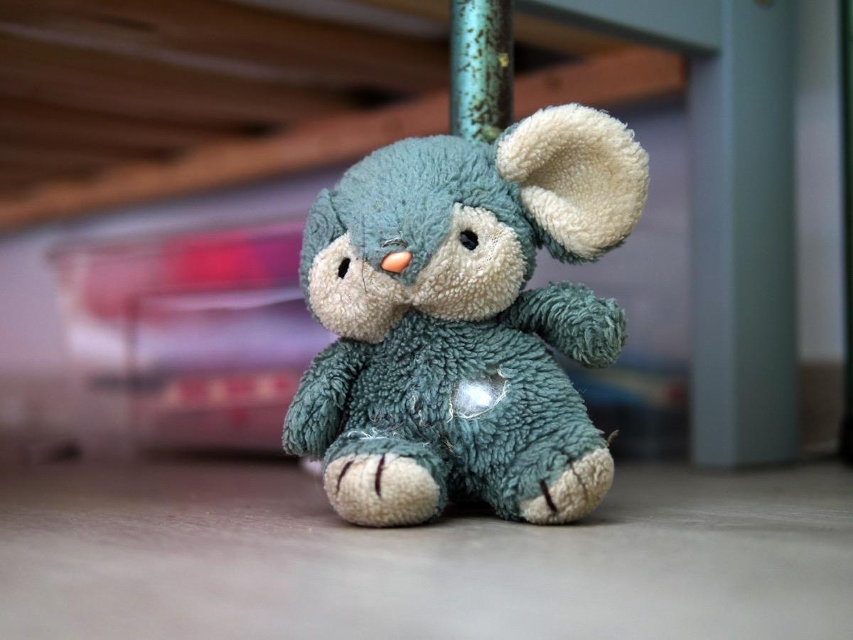 dirty stuffed animal