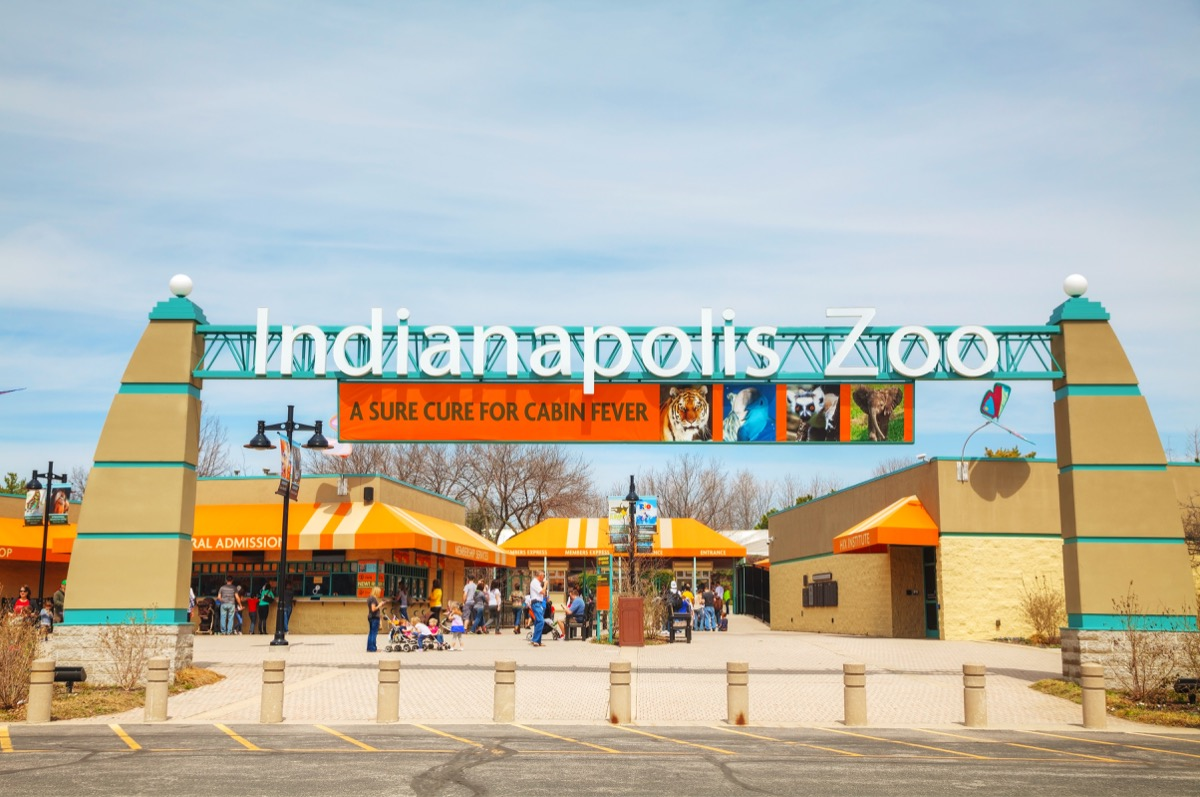 indianapolis zoo indiana fun things to do in every state this summer