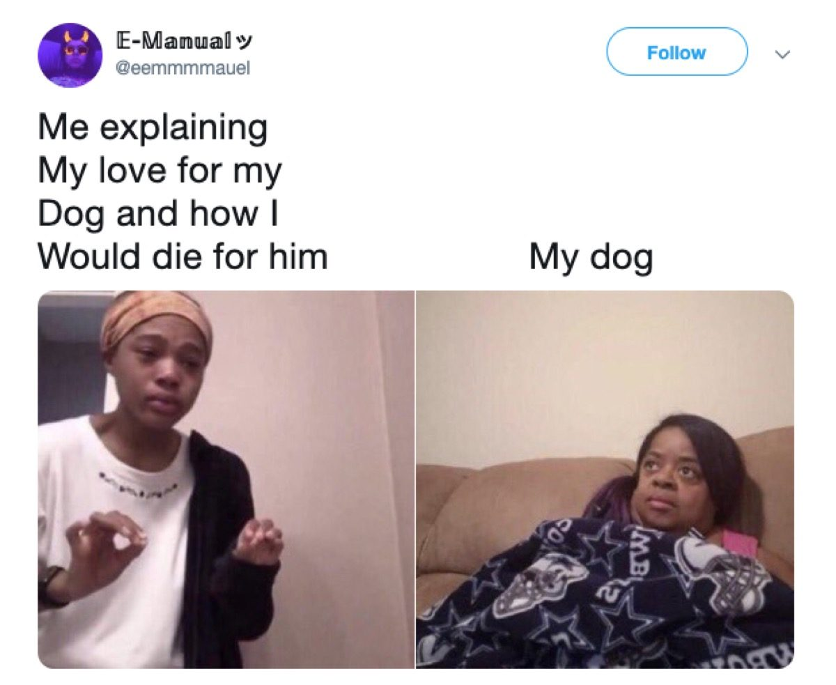 meltdown explanation meme, 2019 memes