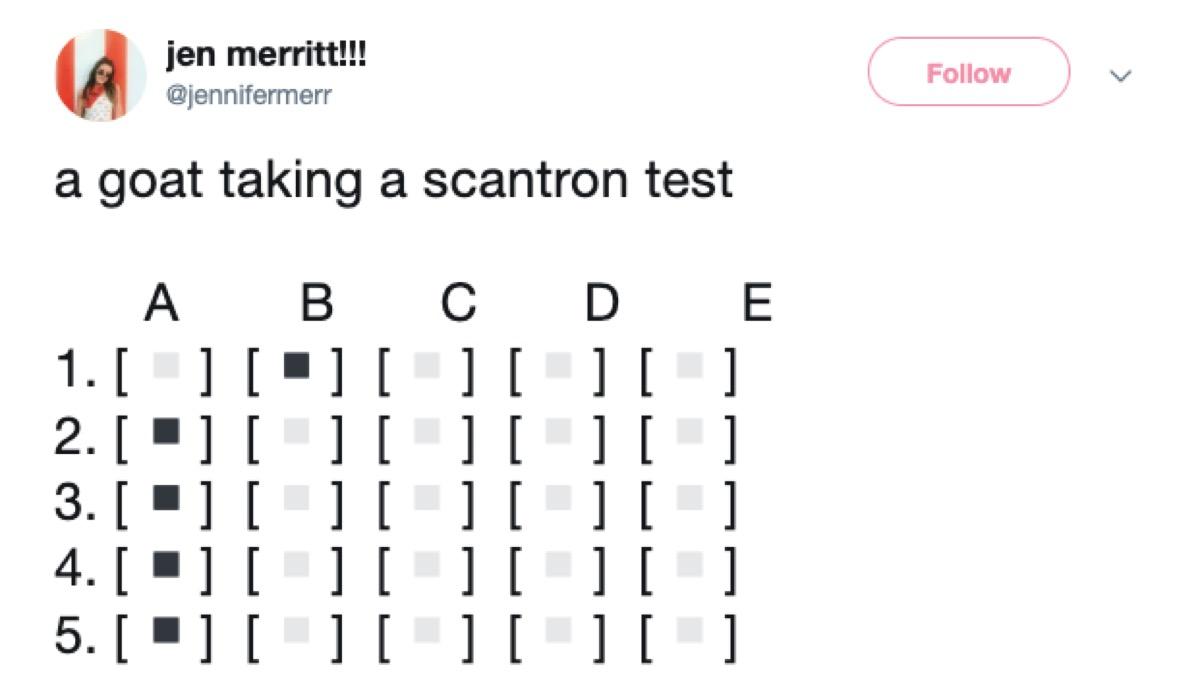 scantron test meme, 2019 meme