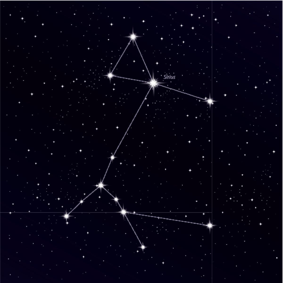 Illustration of Sirius the dog star