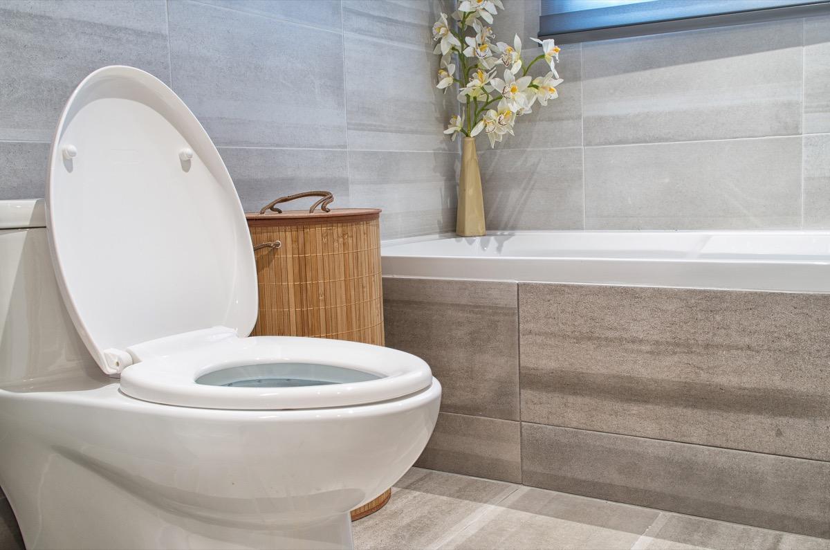 a fancy toilet in a fancy luxury bathroom