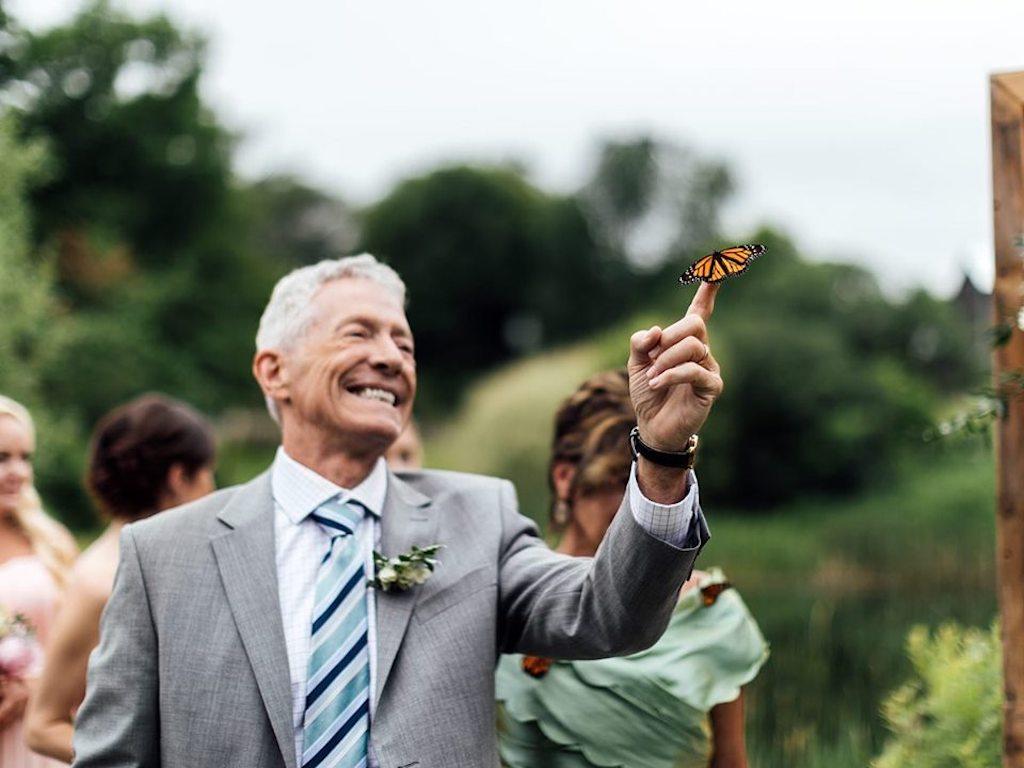 butterflies released at wedding