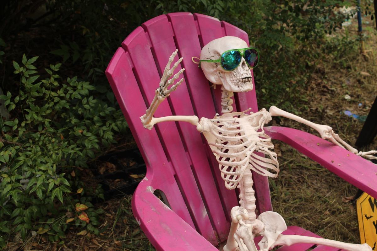 chill skeleton