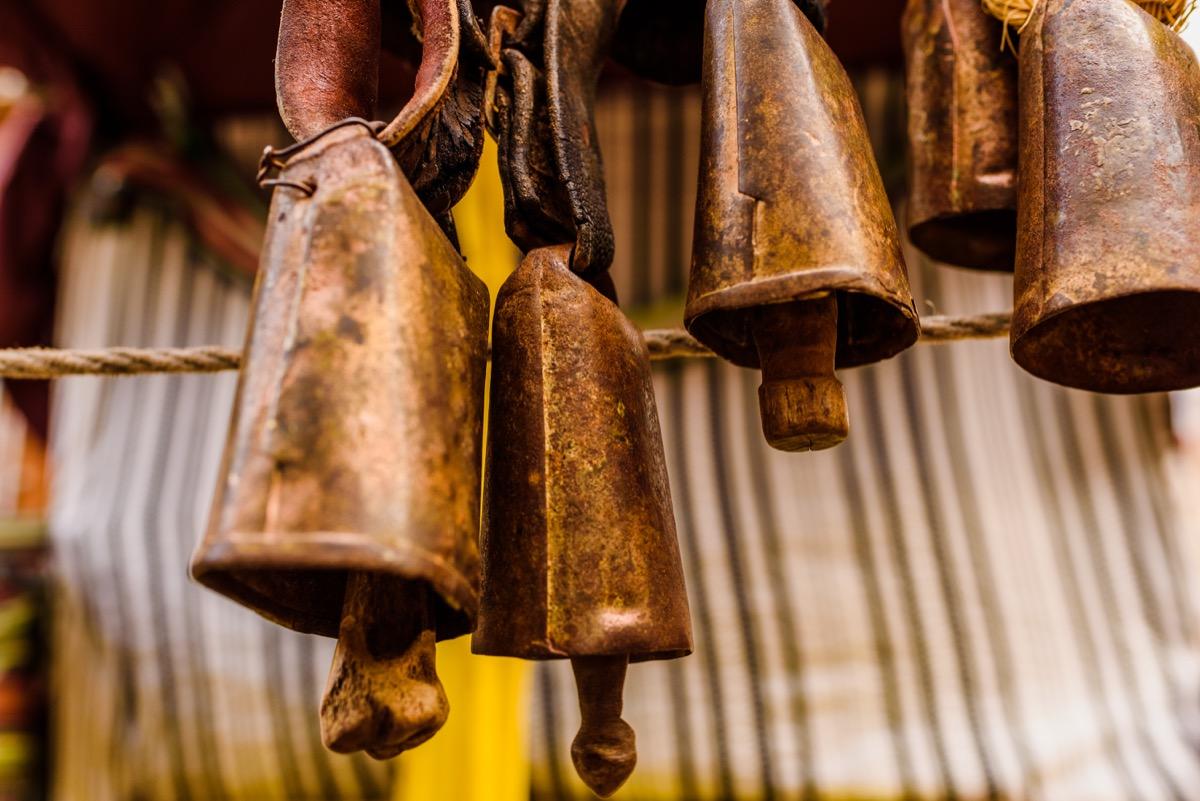 cow bells, weird state records