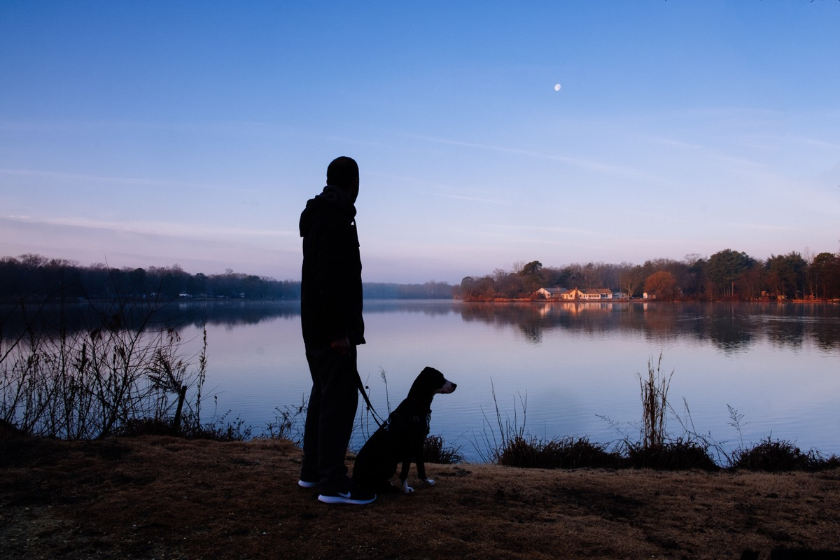 dog and owner at night things you never knew dogs could do