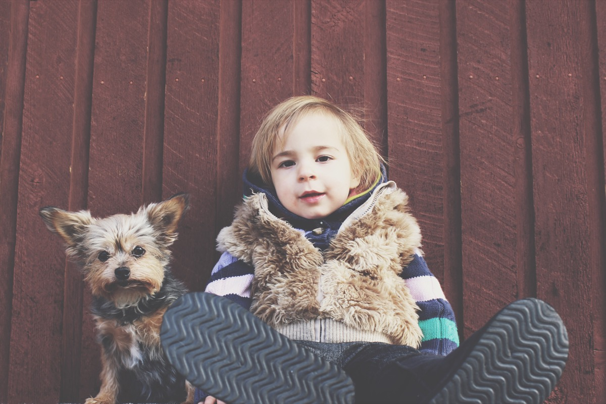 dog and toddler things you never knew dogs could do
