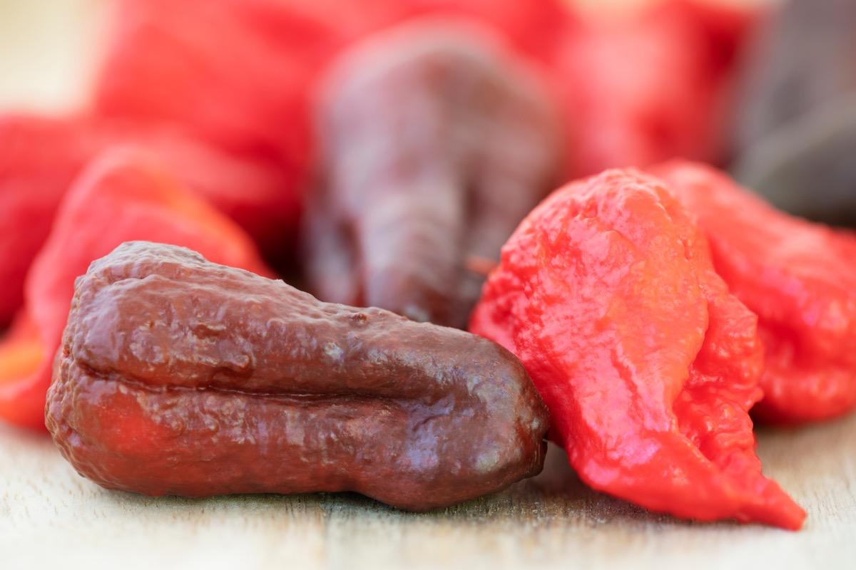 Dragon's breath chili peppers