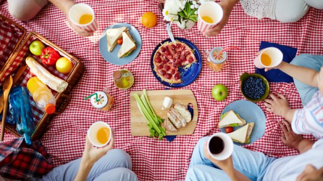 people eating lunch on a gingham picnic blanket, picnic essentials