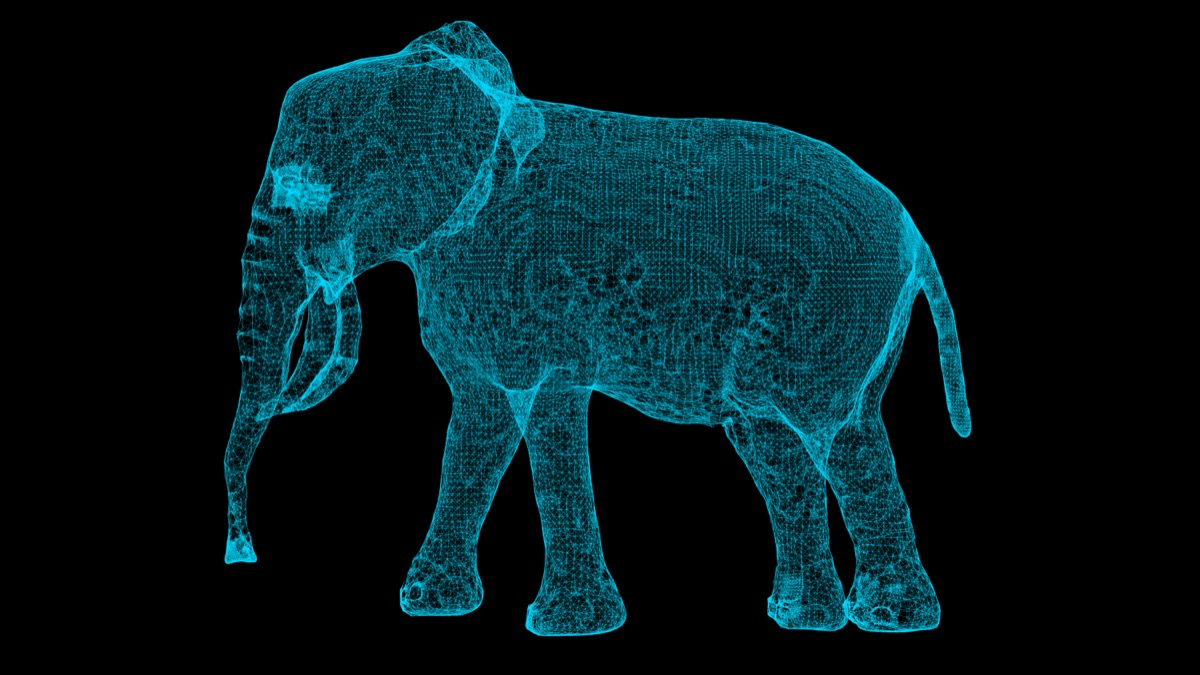 3D hologram of an elephant