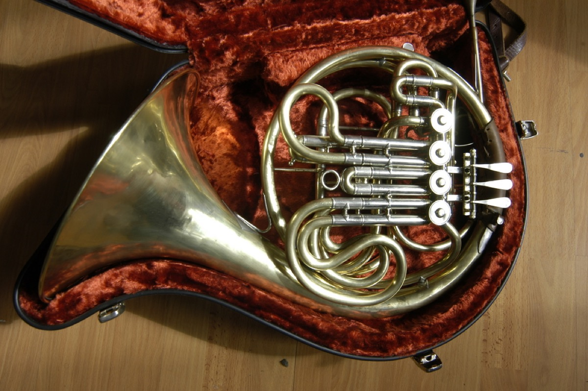 French horn in velvet case, things you should never store in your basement